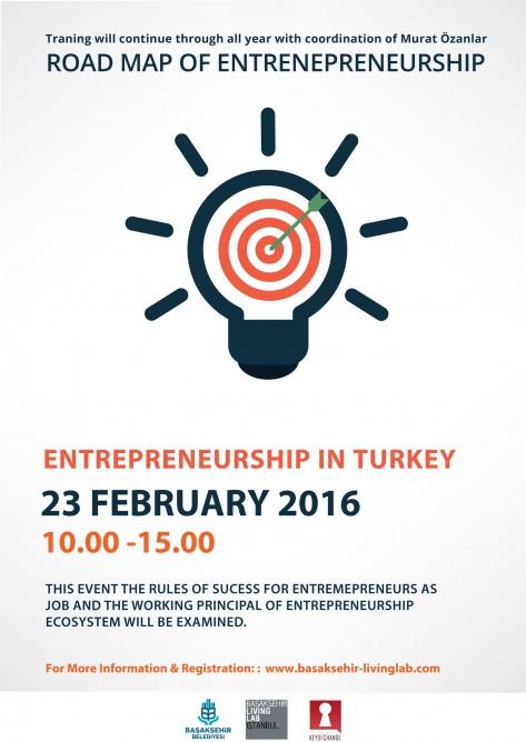 Entrepreneurship in Turkey